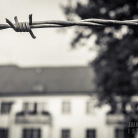 Dachau-campo-003