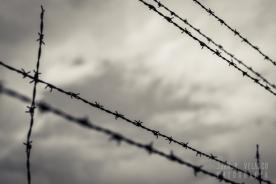 Dachau-campo-014