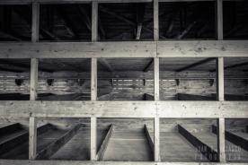 Dachau-campo-015