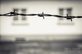 Dachau-campo-018