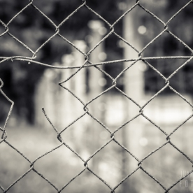Dachau-campo-023