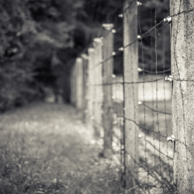 Dachau-campo-027