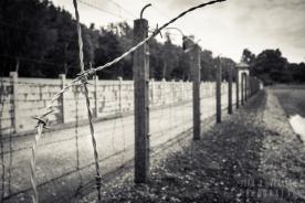 Dachau-campo-039